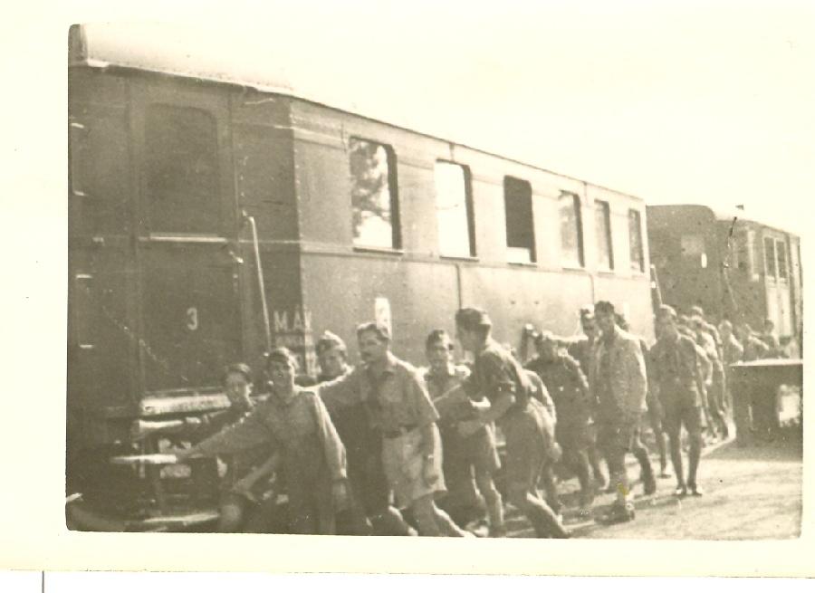 109. számú Magyarság Cserkésztábor